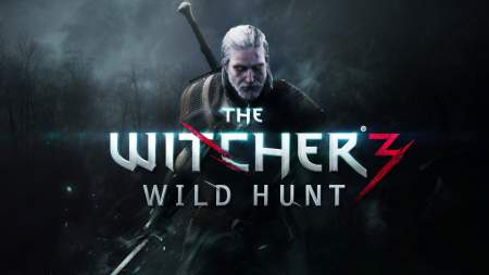 the witcher3 450